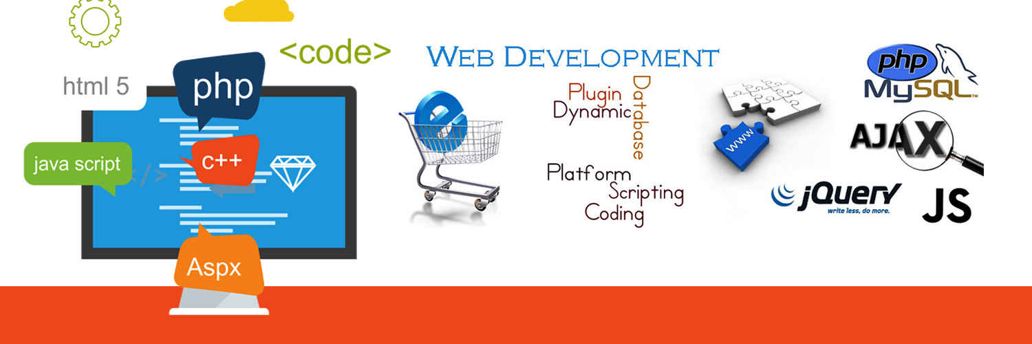 web designing institute meerut