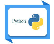 python development training institute meerut
