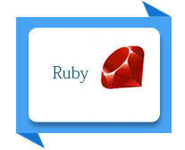 ruby training institute meerut